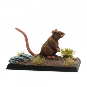 Giant Rat - Chew-Ratty