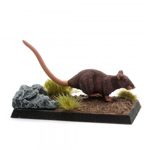 Giant Rat - Shadow-Ratty
