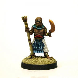 Servants of the Undead Pharaoh  #3 Priest