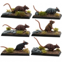 A Mischief of Rats! (Set of Giant Rats)