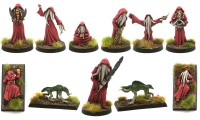 Return of the Cult of the Kraken Lord (11 Miniatures)